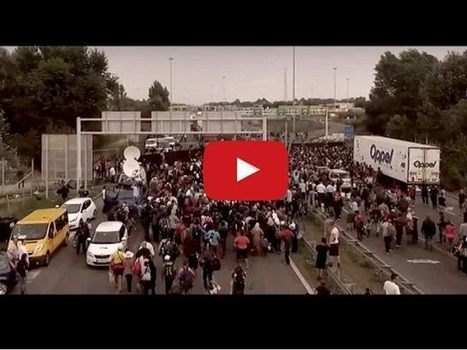 WATCH: The Anti-Migrant Video Going Viral Across Europe | Economic & Multicultural Terrorism | Scoop.it