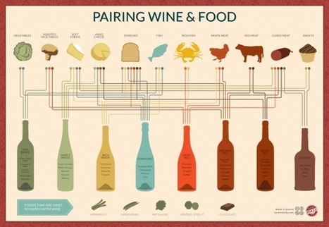 Pairing Wine & Food - Blog About Infographics and Data Visualization | Cool Infographics | Wine, history and culture... | Scoop.it