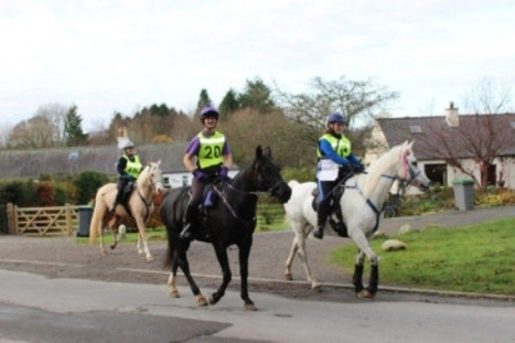 Bonnie Galloway on horseback   Endurance Riding   Scoop.it