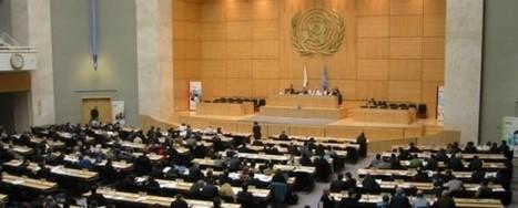 Ecotourisme … Une résolution marocaine adoptée par l'ONU  ! | Ecotourisme au Maroc | Scoop.it