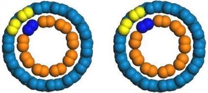 Rotating nanotube motors offer glimpse of future nanodevices #Nanotechnology | Nanotechnology News | Scoop.it