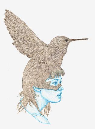 Le colibri, petit animal politique, prépare sa (R)évolution   Chuchoteuse d'Alternatives   Scoop.it