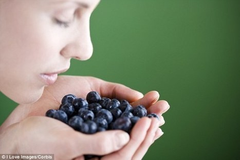 Snacking on BLUEBERRIES could stop dementia developing decades later | Kickin' Kickers | Scoop.it