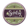 New Scentsy Products