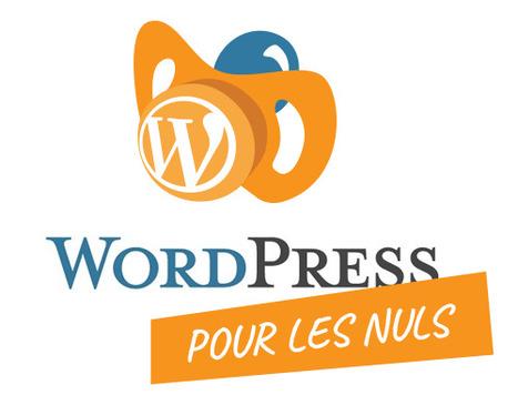➨ WordPress pour les Nuls - Comment bien débuter ? | formation reseaux sociaux, internet, logiciels | Scoop.it