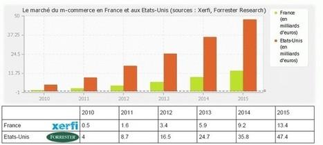 Que sera le m-commerce en 2015 en France ?(suite) | 4G Secure - My Mobile Secure ID | Scoop.it
