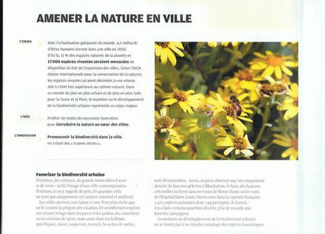 Comment amener la nature en ville ? | l'écologie en milieu urbain | Scoop.it