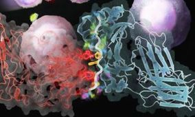 Software maps immune system in 17 days (not 106 years) | Immunology | Scoop.it