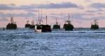 Nova Scotia fishermen's advocacy group urging fishermen to hold back their catch - Canada.com | Nova Scotia Fishing | Scoop.it