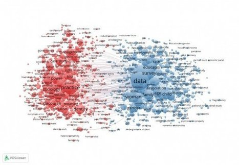Revealing the quantitative-qualitative divide in sociology using bibliometric visualization | The Praxis of Research | Scoop.it