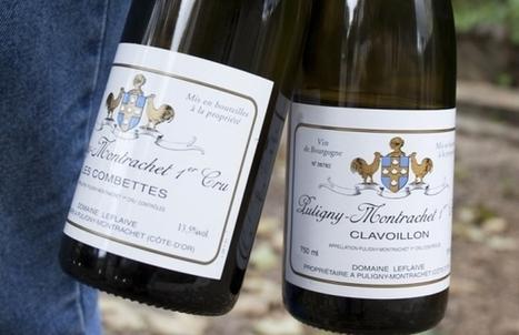 Brice de la Morandière succède à Anne-Claude Leflaive   Le Vin en Grand - Vivez en Grand ! www.vinengrand.com   Scoop.it