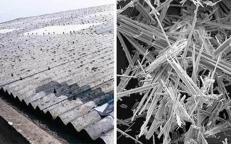 """The Telegraph (UK) """"Asbestos: the key facts"""" 
