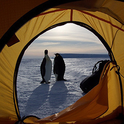 World's Most Thrilling Camping Destinations | First Post | Scoop.it