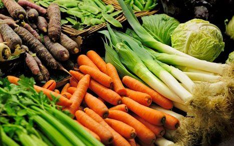 Number of vegans in Britain rises by 360% in 10 years | Vegan going mainstream | Scoop.it