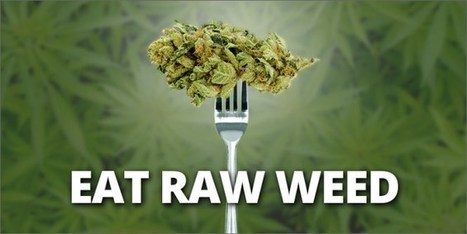 Why You Should Be Eating Raw Weed? | promienie | Scoop.it