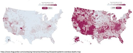Drug overdose deaths in the United States per 100,000 persons for 1999 and 2014 | Reflecting on Basic Income | Scoop.it