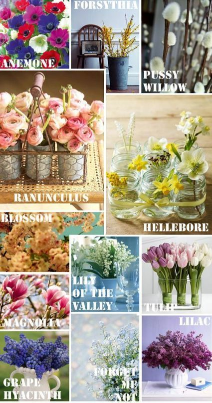 Beautiful flower pictures and name list of flow beautiful flower pictures and name list of flowers stylebizz mightylinksfo