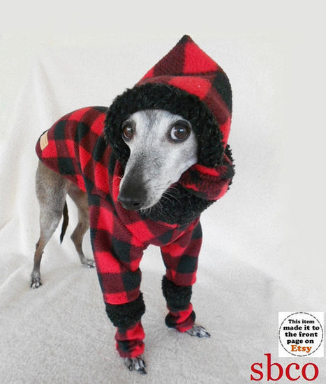 Modern Lumberjack Custom Made Dog Sweater with Matching Hat and LegWarmers | Etsymode | Scoop.it