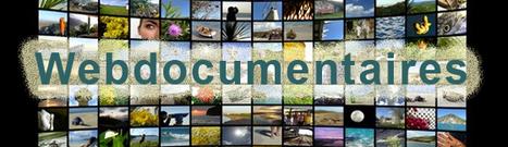 Installez-vous confortablement : +100 h de Web docu fiction multimédia…     Fatioua Veille Documentaire   Scoop.it