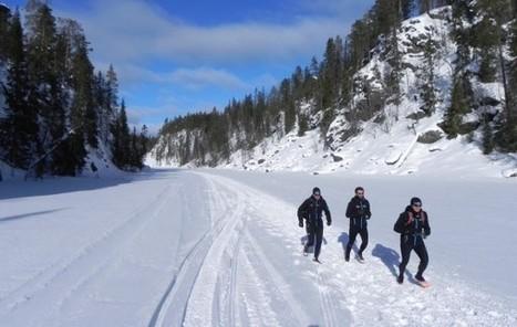Le réveil du printemps en Laponie … | Track & News | Voyages en terres polaires | Scoop.it