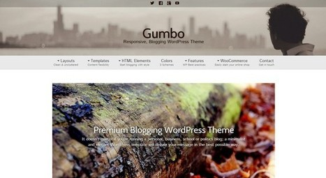 Gumbo - A Flexible Free WordPress Theme | Free & Premium WordPress Themes | Scoop.it