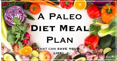 Paleo Weight Loss Meal Plan - Fitness Training | android app development | Scoop.it