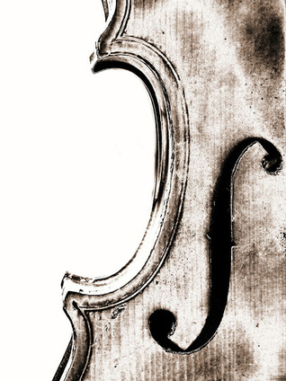 23 Beautiful Pictures of Violins | Everything Photographic | Scoop.it