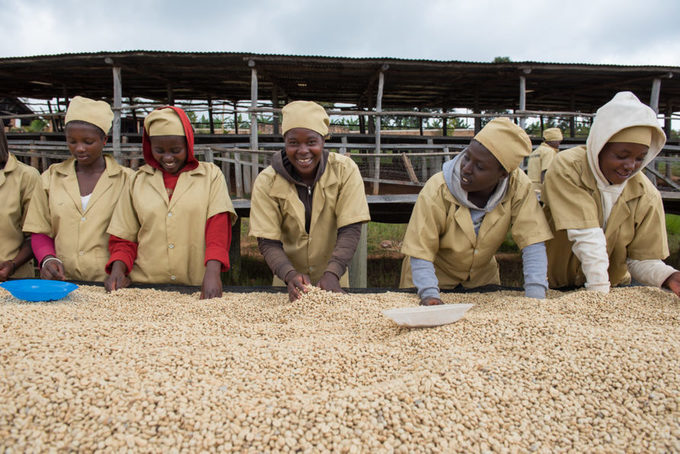 WHY AGRICULTURAL BUSINESSES ARE ENGINES OF SUSTAINABLE GROWTH