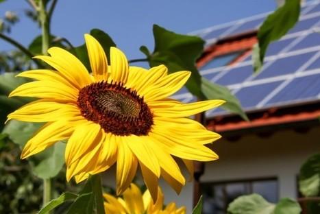 Los países que más y menos invierten en energías renovables | ExpokNews | Infraestructura Sostenible | Scoop.it