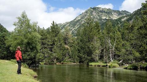 Decenas de entidades piden un fondo para frenar el abandono de los espacios naturales en Catalunya | #territori | Scoop.it