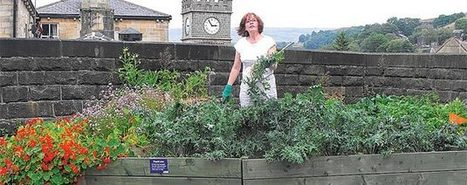 """""""Todmorden"""" - The Incredible Edible Town 