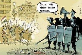 Non autorisé   #marchedesbanlieues -> #occupynnocents   Scoop.it