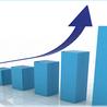 market leader seo services