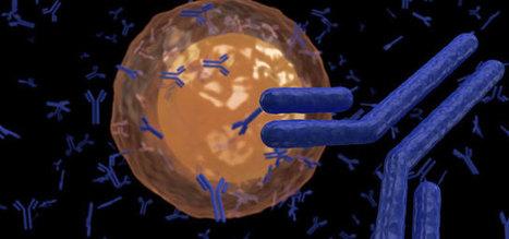Nouvelle cible thérapeutique contre les infections virales persistantes   INRS-Institut Armand-Frappier   Institut Pasteur de Tunis-معهد باستور تونس   Scoop.it