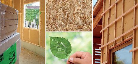 Fibre De Bois In Build Green La Curation Scoopit