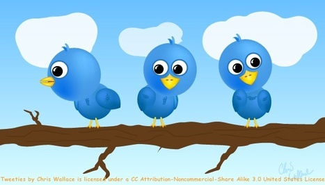 Twitter as a Serendipitous LearningSpace | Learning with PLE | Scoop.it
