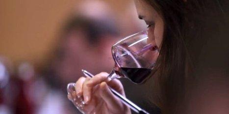 39 vins de Dordogne médaillés au concours des Vignerons ... - Sud Ouest | dordogne - perigord | Scoop.it