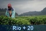 Ban Ki-moon: habrá un Panel de Alto Nivel para la agenda de desarrollo post 2015 | UNDP | Río+20 El Salvador | Scoop.it
