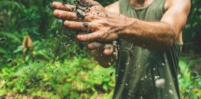 La biodiversité des sols nous protège, protégeons-la aussi