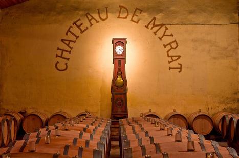 Le vin : transporter sans blesser - Contrepoints   Le Vin en Grand - Vivez en Grand ! www.vinengrand.com   Scoop.it