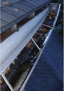 Image result for gutter problem pictures