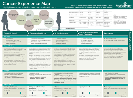 The Cancer Experience Map: An Approach to Including the Patient Voice in Supportive Care Solutions | Cancer Survivorship | Scoop.it