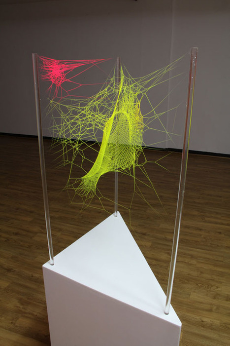 Spiderwebs Transformed into Colorful Works of Art | Art Installations, Sculpture, Contemporary Art | Scoop.it