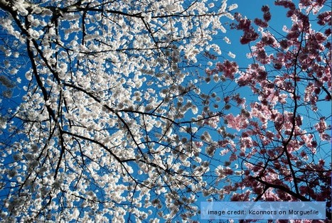 Spring - Picture Vocabulary | English Word Power | Scoop.it