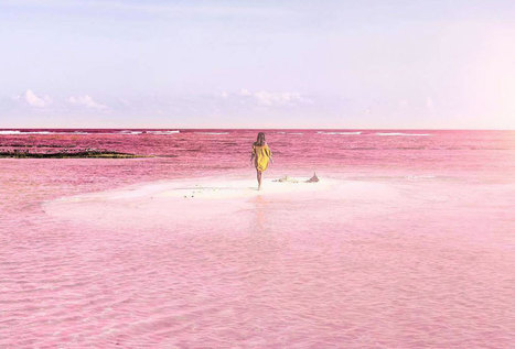 México tiene el lugar favorito de Instagram: un lago color ¡ROSA! | Mexico | Scoop.it