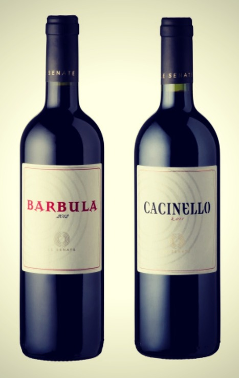 Le Senate – New Types of Wine in Le Marche | Wine | Scoop.it