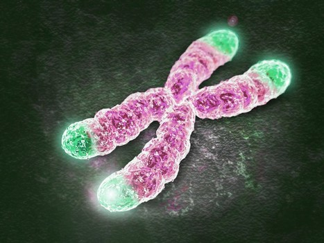 First gene therapy successful against human aging | Design to Humanise | Scoop.it