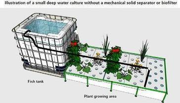 Designing an aquaponic unit | TECA | Aquaponics~Aquaculture~Fish~Food | Scoop.it