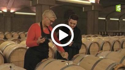 Les trésors des vignobles français du 29-12-2016 à 20:55 en replay | Plus qu'1 journée pour voir cette vidéo en streaming sur francetv pluzz | Le vin quotidien | Scoop.it