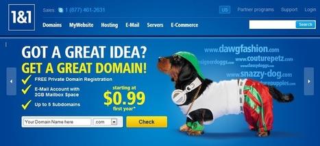 Top Ten Domain and Web Hosting Providers | Web Top Ten | Scoop.it